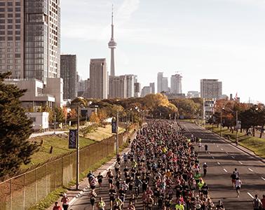 Scotiabank Toronto Waterfront Marathon - cover image