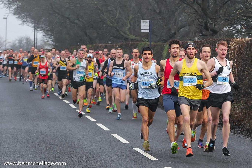 Brass Monkey Half Marathon - cover image