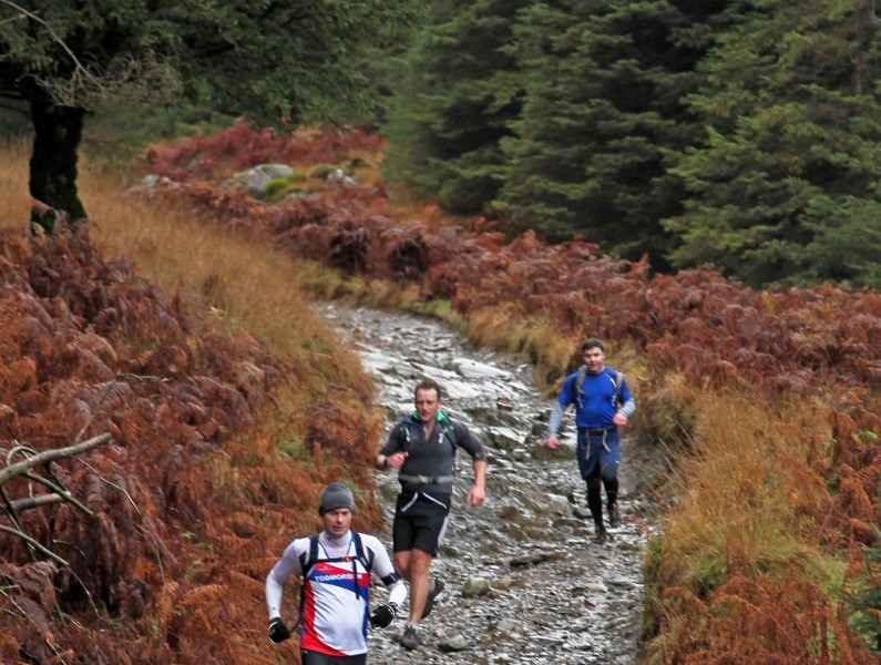 Montane Trail 26 \u0026 Trail 13 Grizedale Forest - cover image