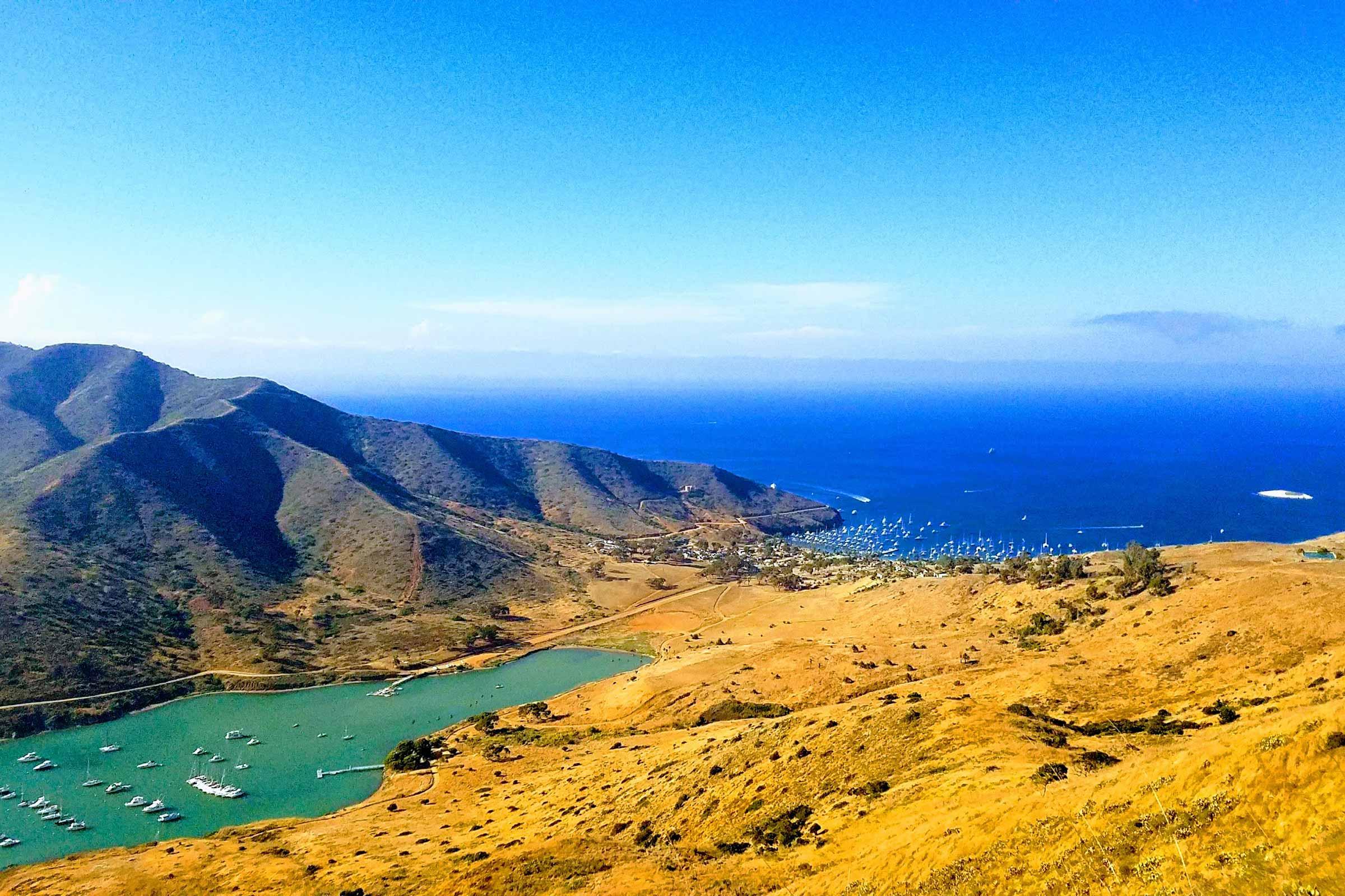 OTILLO Swimrun Catalina - cover image
