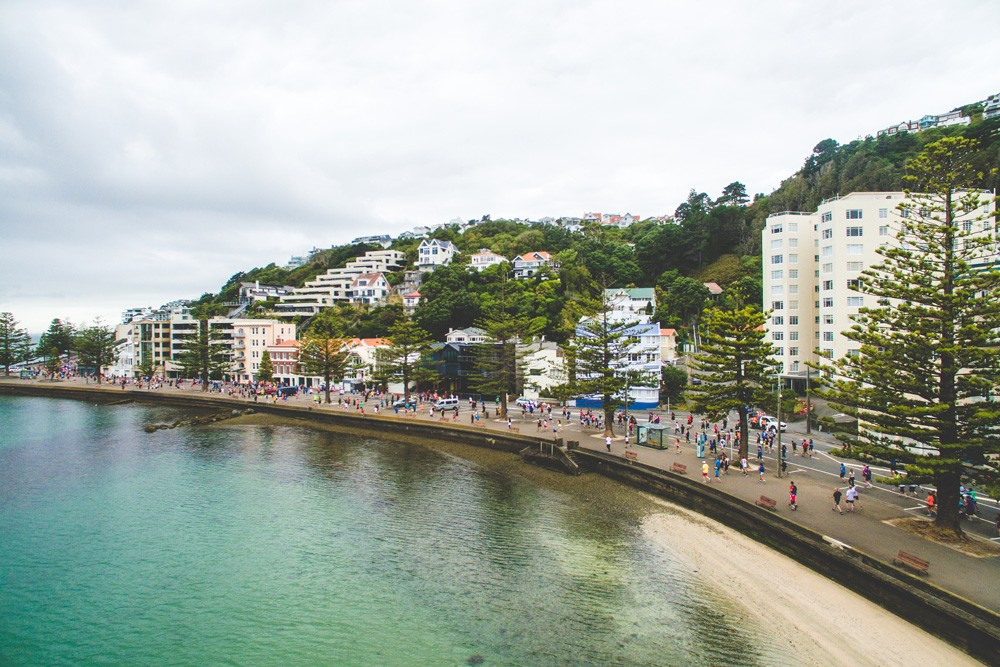 Wellington Round the Bays - cover image