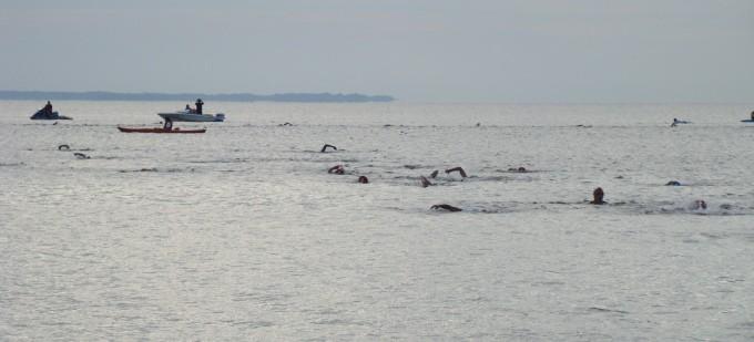 YMCA Colonial Beach Sprint Triathlon - cover image