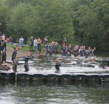 New Forest Rattler Swim
