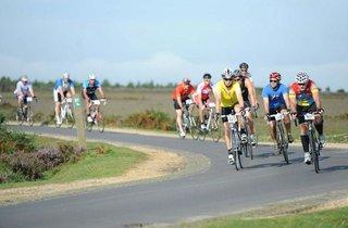 New Forest Rattler Bike