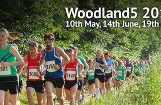 Woodland 5 - July