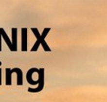PHOENIX Indy Run