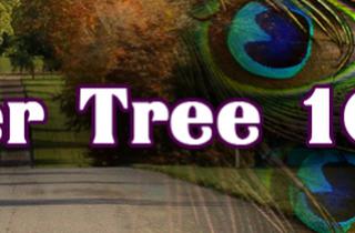 Larmer Tree Races