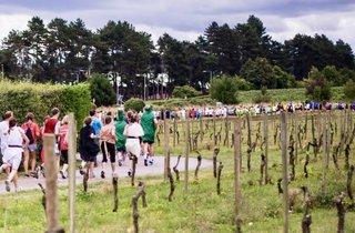 Bacchus Marathon and Half Marathon