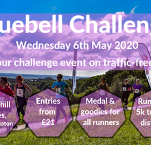 The Bluebell Challenge