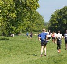 Weald Challenge 50km Ultra Trail